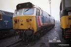 Class 50s