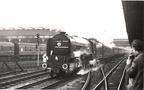 23.04.66 60528 Tudor Minstrel on empty stock for 'Waverley Rail Tou