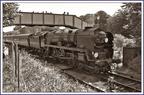 34016 Bodmin at Ropley