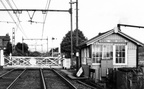 Kendall Green Crossing 1 week after the line to Wath closed. 25th July 1981.