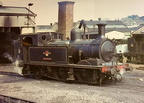 W21 Sandown on shed at Ryde , W30 Shorwell in the background. 1965
