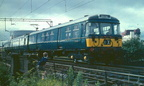 Blue 303 003