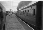 Class 5's storm through Hest Bank 1959