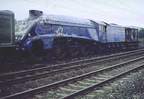 26th October 1978 and 60019 BITTERN and 60532 BLUE PETER sit in Hadfield loop awaiting a margin after service to gain access to Dinting Railway Centre. 1