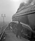 Kings Cross on a very foggy 14th October 1961. Here, the fireman of 60006 'Sir Ralph Wedgwood' is fitting lamps before setting out with a Leeds express.