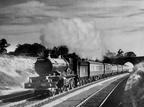 4061 Glastonbury Abbey hauling a Talyllyn Railway Preservation Society special on Hatton Bank in 1955. Photo by R. Riley