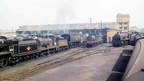 Ashford Motive Power Depot.1961