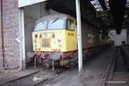 56079 Sunderland