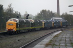 Class 55 55016 in BR Green with 55009, 55019, 55002 & 55022 at Stalybridge