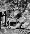 Beattie well-tank No. 30585 taking on water at Dunmere Wood in 1958.