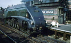 Mallard King's Cross 1962
